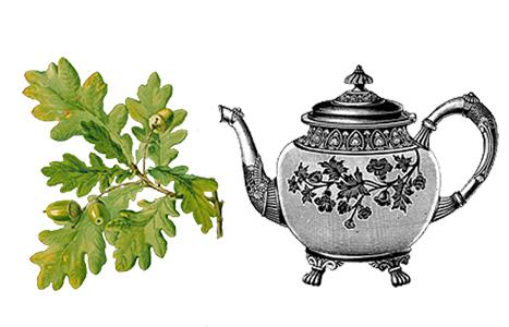 čaj z dubové kůry
