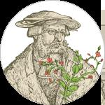 Herbalista