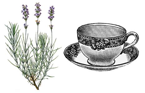 levandulový čaj