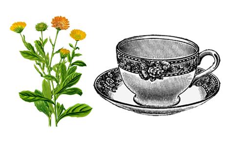 měsíčkový čaj