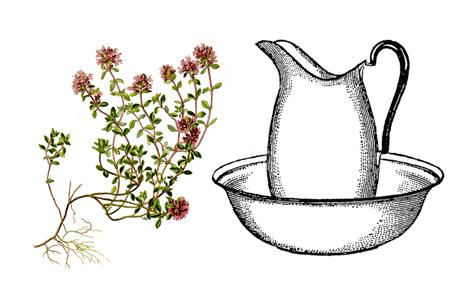 obklad z mateřídouškového oleje